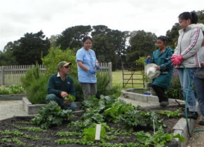 Community Gardening in Wyndham
