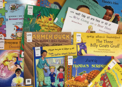 A variety of bilingual picture books