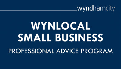 WynLocal Small Business Professional Advice Program