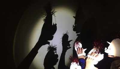 Fringy Families: Sticks Stones Broken Bones Shadow Puppetry Workshop