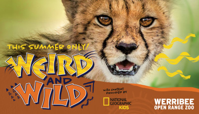 Weird and Wild at Werribee Open Range Zoo