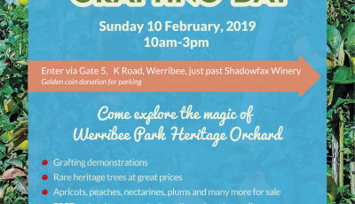 Werribee Park Heritage Orchard Grafting Day